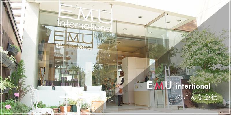 EMU intertionalのこんな会社