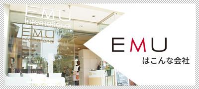 EMUはこんな会社